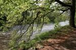 River Earn