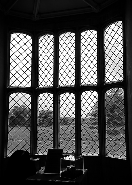 The same scene today - note the same trees still visible through the window and the National Trust's example Mouse-Trap cameras in the foreground.