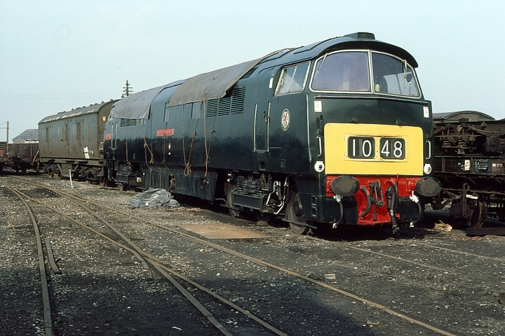D1048 Western Lady display a Small Yellow Warning Panel