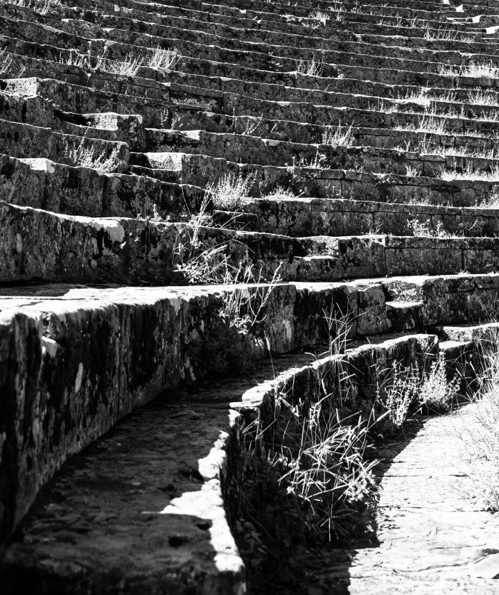 Patrician Steps